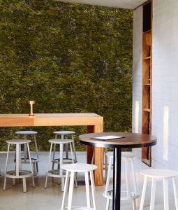 Logan wall mural from HD Walls Biophilic Design Collection