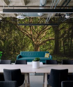 FairyTale wall mural from HD Walls Biophilic Design Collection