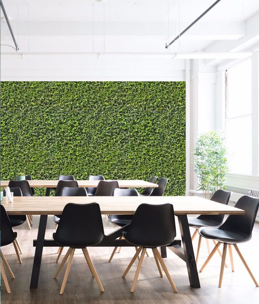 Grove wall mural from HD Walls Biophilic Design Collection