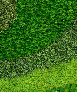 Helix wall mural from HD Walls Biophilic Design Collection